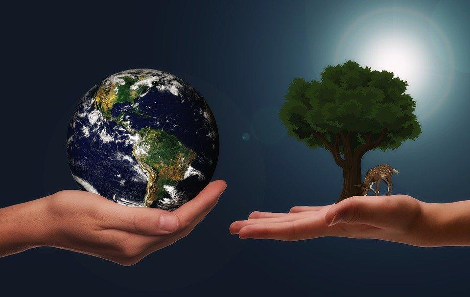 Védd a környezetedet